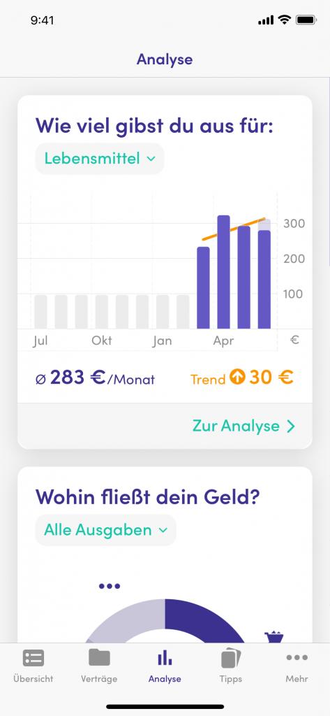 Analysen Screenshot vom Finanzguru_Test_Erfahrungsbericht